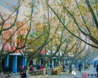 【安庆老照片】凝聚安庆人的消费情感 记忆里的老人民路