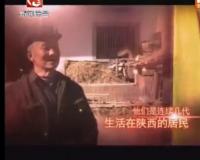 根在安庆的陕西人--安庆天天直播系列报道