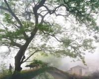 安庆旅游风光摄影展(四)