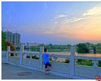 菱湖风景区的桥--芙蓉桥